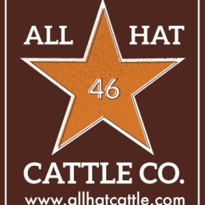 ALL HAT - Vintage Logo 2014