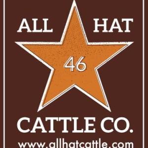 ALL HAT - Vintage Logo 2014